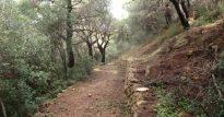 path3_arxaio_monopati_lygouriosm
